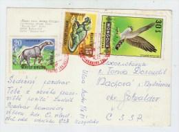 Mongolia DINOSAURS BIRD POSTCARD USED - Stamps