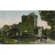 RUDTP2077-LFTD1605TIR. Tarjeta Postal De IRLANDA.Castillo De Ross. KILLARNEY. Coche De Caballos. - Kerry
