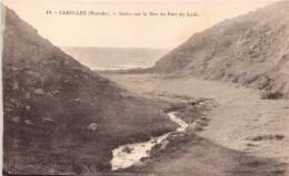 CAROLLES - Sortie Sur La Mer Du Port De Lude - Andere Gemeenten