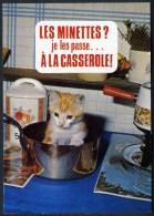 "CPM Neuve   ""Animaux Humoristiques"" - Katten"