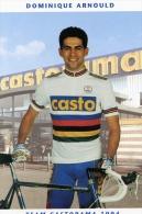 2013 - Cp Cyclisme  Dominique Arnould - Castorama 1994 - Cycling