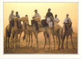 Afrique >NIGER Teguidda N'Tessoumt La Cure Salée  (B) *PRIX FIXE - Niger
