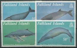 Falkland 1989 Wale 503/06 Postfrisch - Falklandeilanden