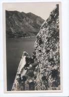 Montenegreo - Crna Gora - Kotor - Not Used - Old Photo Postcard - Montenegro