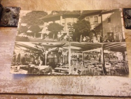 Cernay Souvenir Griffon Café Brasserie Cpsm - Cernay