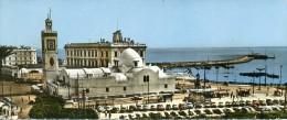 ALGER LA PLACE DU GOUVERNEMENT Carte GRAND FORMAT Non Circulé - Algiers