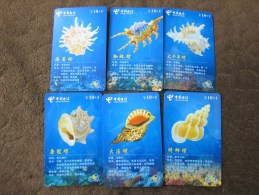 China Telecom Prepaid Phonecard, Shell-conch, Set Of 12,used - Chine