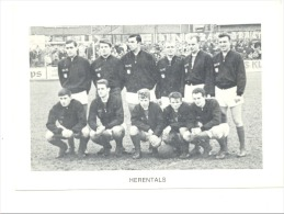 Chromo/Photo (8,5 X12,5 Cm) - Equipe De Football Belge -HERENTALS (b159) Joueur, Sport, Ballon - Football