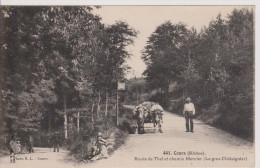 COURS - Route De Thel Et Chemin Mercier (Le Gros Châtaignier) - Cours-la-Ville