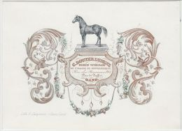 24096g MEDECIN VETERINAIRE - C. DOUTERLUIGNE - Rue Des Regnesses, 3 - Gand - Carte Porcelaine 18.6x13.4c - GF - Cartes De Visite