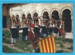 C.P.M. Foment De La Sardana - Ball Des Circolets - Cloître D'Elne - Fête Des Vendanges - Personnages