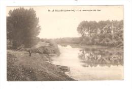 CPA :44 - Le Cellier : La Loire Entre Les Iles : Cours D'eau - Barques Amarrées - Homme Sur Une Berge - Le Cellier