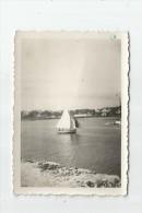 photographie , 8.5 x 6 , bateau , voilier , LA TRINITE SUR MER , 2 scans