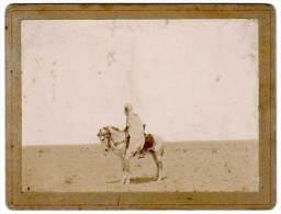 Photo Sur Carton, Afrique, Méhariste à Cheval - Afrique