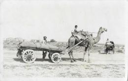 Karachi (Pakistan) 1928 - Chameau (Dromadaire) Atelé à Un Charriot - Pakistan