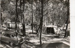 85 - SAINT-JEAN DE MONTS  - Camp Du Moulin D'orouet - 1953 - Saint Jean De Monts