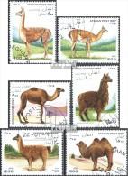 Afghanistan 1712-1717 (kompl.Ausg.) Gestempelt 1997 Kamele - Afganistán