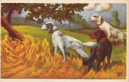 [DC5184] CARTOLINA - ANIMALI - CANI DA CACCIA - Viaggiata 1949 - Old Postcard - Chiens