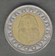 EGITTO 1 POUND 1429 BIMETALLICA - Egitto