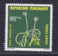 MADAGASCAR AERIENS  N°   155 ** MNH Neuf Sans Charnière, TB - Madagascar (1960-...)