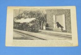 Neufchatel En Bray - Marquis ( Chien Garde Barrière )  :::::: Animation - Trains - Chemin De Fer - Locomotives - Gare - Neufchâtel En Bray