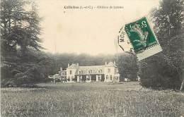 Réf : C-15-356  :  CELLETTES  CHATEAU DE LUTAINE - France
