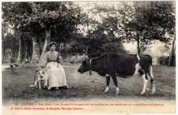 Landes - Soir D'été - Les Jeunes Filles Gardent Les Vaches ... ( Daury, Photo ) - France
