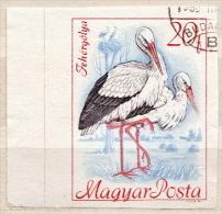 Hungary Used Imperforated Stamp - Storks & Long-legged Wading Birds