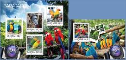 m14417ab Mozambique 2014 Birds Parrots 2 s/s