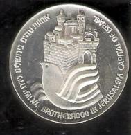 MONEDA DE PLATA DE ISRAEL DE 25 LIROT   (COIN) SILVER-ARGENT - Israel