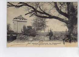 Environs De CHASSENEUIL - La Tour Du Château Des Pins - Très Bon état - France