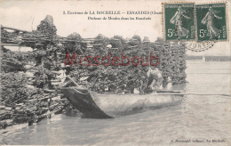 17 - LA ROCHELLE  - ESNANDES - Pêcheur De Moules Dans Les Bouchots - 2 Scans - La Rochelle