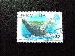 BERMUDA - BERMUDES - 1978-79 - FAUNE DES BERMUDES - Yvert Nº 367 º FU - Bermudas