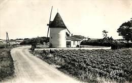 Réf : C-15-539  : ILE D OLERON LE MOULIN A VENT DE LA BREE - Ile D'Oléron