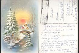 Serbia, Macedonia, Skopje, Happy New Year, Robins, 1993 01051 - Neujahr