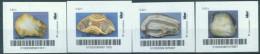 Biber Post 4 Mkn Achate (1) (4 X 0,42) Glatt, Langer UPOC Altes Logo A716 - Privées & Locales
