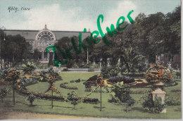 AK: Köln, Flora, Um 1905 - Köln