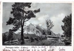 CA RTOLINA DA -BERGAMO-2-8-1843-REGNO CENT.30 -FRONTE::PAESAGGIO  ITALICO-L´ALPE - Nuovi