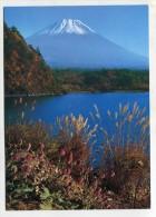 JAPAN - AK 216435 A View Thistle And Mt. Fuji From Lake Motosu - Japan