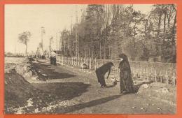 GAA-14 Veuves Françaises, Mères,soeurs, à La Recherche Des Tombes De Chers Disparus ANIME. Jouvène éditeur. Non Circulé - Monuments Aux Morts