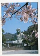 JAPAN - AK 216547 Kamakura - Kamakura Daibutsu - Japan