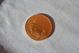 """Médaille De La Compagnie D'assurance """"Le Secours"""" En Vermeil - Firma's"""