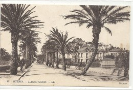 -19--HYERES--L AVENUE GODILLOT--ECRITE AU VERSO EN 1915-- - Hyeres