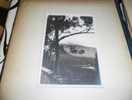 Photographie Ancienne Paysage De Tenerife Santa Cruz, Tampon Photo A. Denitez - Lieux