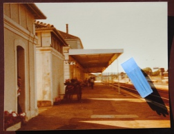 1 Photo - Gare De LANGRES - Treinen