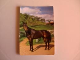 Insurance/ Assurances/ Seguros Global - Pedro Filipe Da Costa - Portugal Portuguese Pocket Calendar 2008 - Calendriers