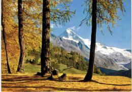 Suisse - Les Haudères Mit Dent Blanche - VS Valais