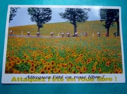 Cyclisme Saint Gaudens-Castres Tour De France 1991 Photo Du Pool Vandystadt Espace Culturel Paul Ricard - Ciclismo