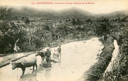 INDOCHINE(TYPE) RIZIERE - Vietnam