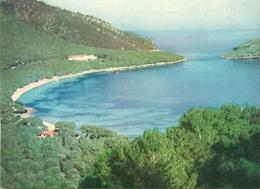 CPSM Mallorca-Formentor   L1848 - Formentera